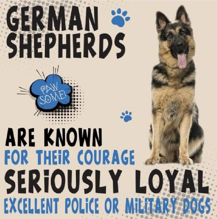 German Shepherd Metal Wall Sign
